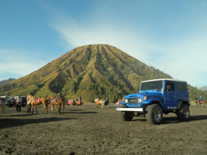jeep blueflame tour